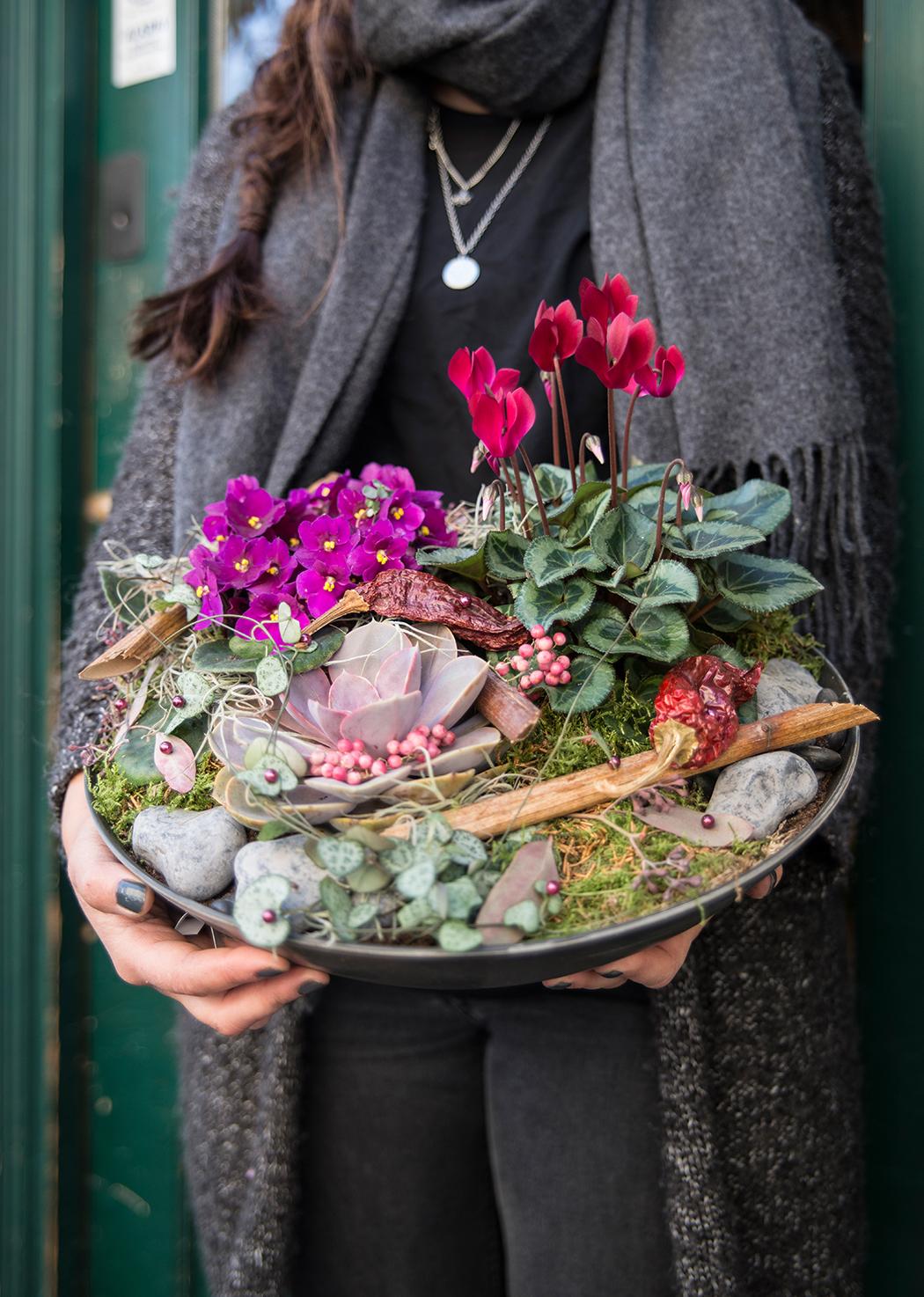 blomster-som-taler-hosten-hostgruppe-1